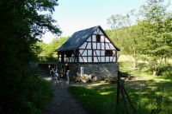 014_Wassermühle_Alterkülz